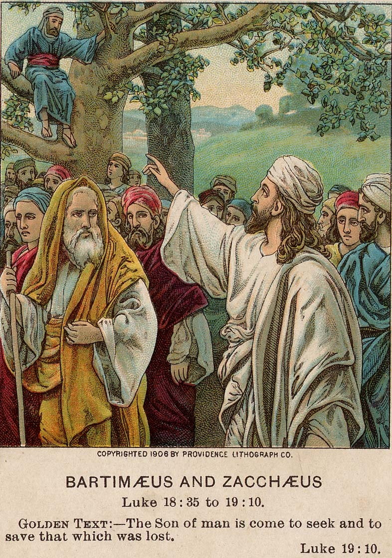 Image result for the Son of Man came to seek out and to save the lost.'