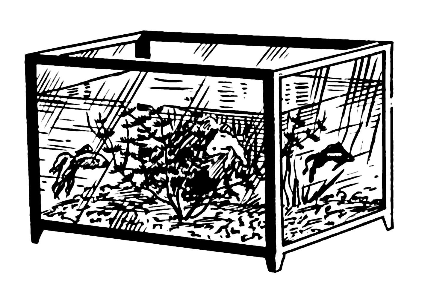 Fish tank drawing pictures - File Aquarium 001 Png
