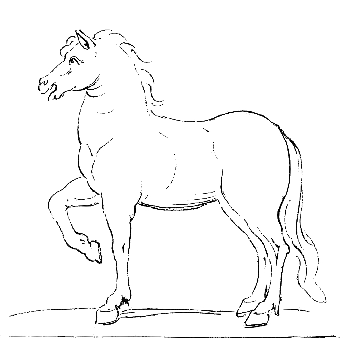File:Black and White Horse Drawing 001.jpg - The Work of ...