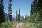 Forest Road Above Cooper Lake.jpg