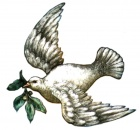 Dove with Olive Branch.jpg