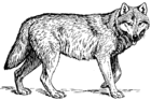 Wolf (PSF).png