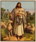 Jesus - The Good Shepherd.jpg