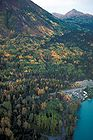 Kenai Lake Fall Colors.jpg
