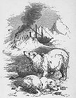 Bears in a snowy mountain area near a Steamship.jpg