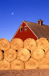 Bales of Hay in Front of Barn at Small farm near Ames, Iowa 001.jpg