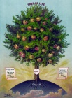 Tree of Life--Fruits of the Holy Spirit.jpg