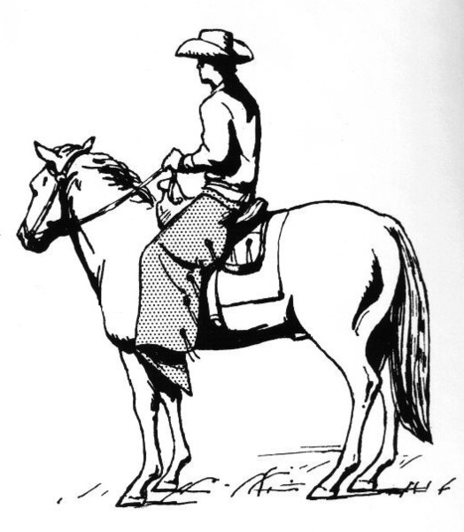 File:Cowboy on a Horse Wearing Chaps 002.png