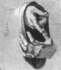 Dürer - Study of hands.jpg