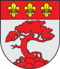 Coat of Arms of Pavilosta Latvia 01.png