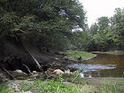 Alapaha River near Jennings, Florida going into sinkhole to Floridan Aquifer in 2002.jpg